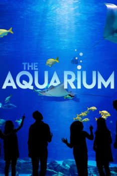 Океанариум / The Aquarium (2019)