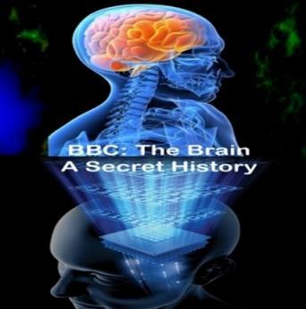 Мозг тайны сознания 2010
