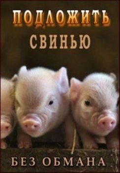 Подложить свинью 2015 смотреть онлайн