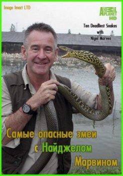Самые опасные змеи с найджелом