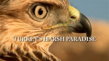 ����� ������ / ������� ��� ������ / Turkey's Harsh Paradise (2015)