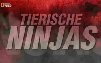 ����� ������� ��������. ������ ��������� ���� / World's Deadliest: Animal Ninja Warriors (2014) National Geographic