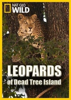 Леопарды дельты Окаванго / Leopards of Dead Tree Island (2010)