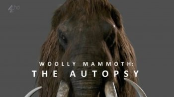 Вскрытие мамонта / Woolly mammoth: The Autopsy (2014)